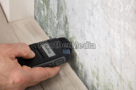 person hand testing the moldy wall