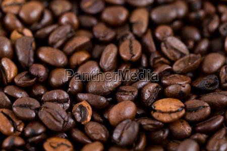 roasted coffee bean texture
