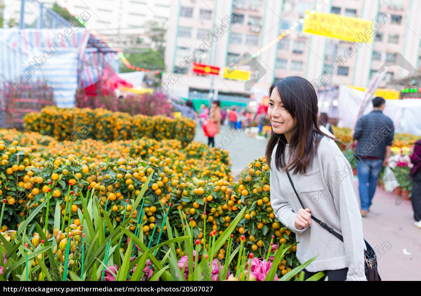 asian, woman, choosing, potted, citrus - 20507027