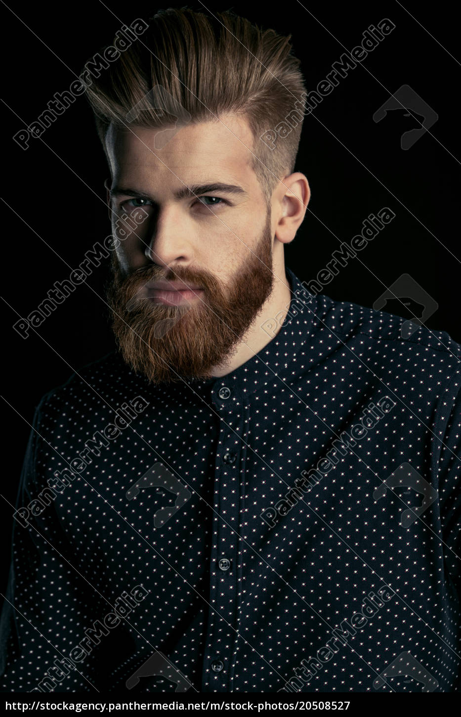 portrait, of, handsome, bearded, man, in - 20508527