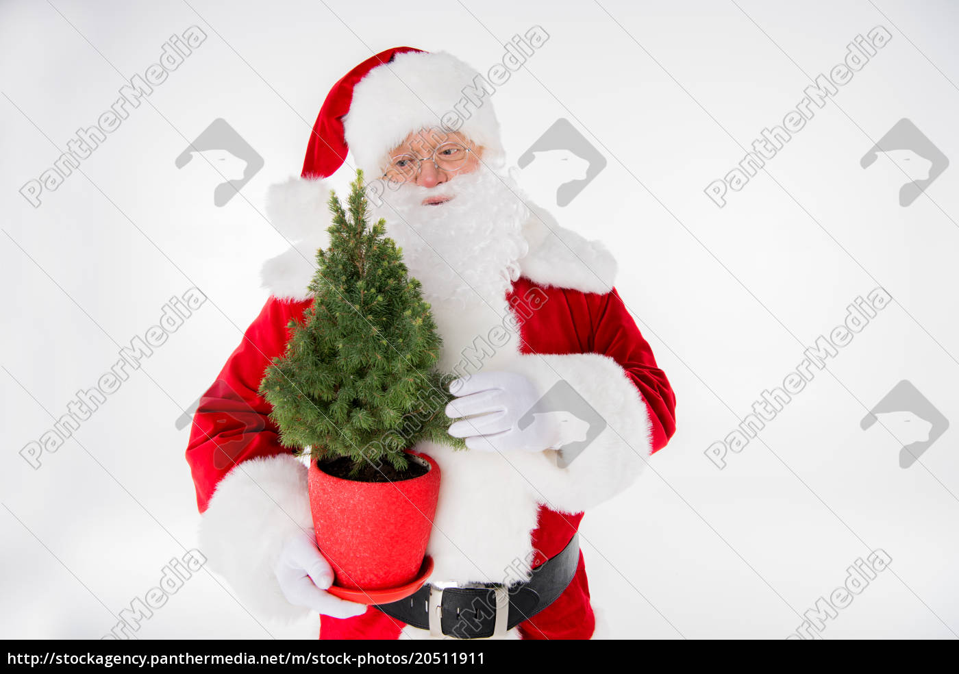 santa, claus, with, fir, tree, in - 20511911
