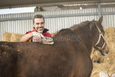 man working in stud brushing horse