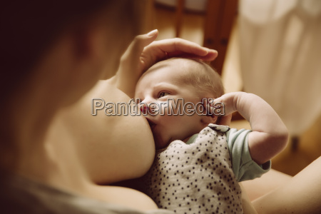 newborn drinking from mothers breast