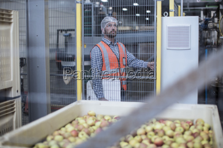 inspector in apple distribution factory