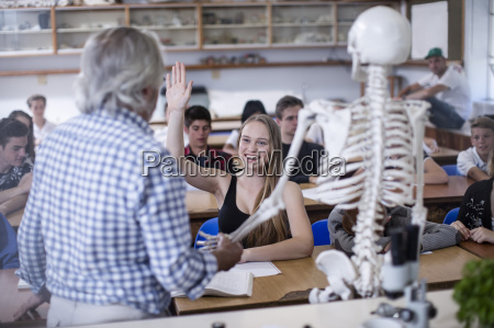 teacher with anatomy model and students