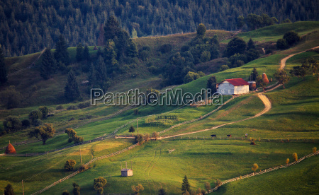 september rural scene in mountains authentic
