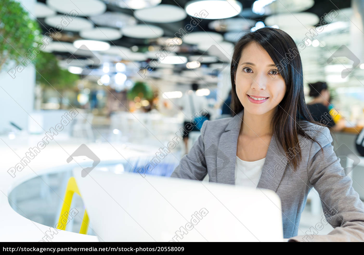 businesswoman, use, of, notebook, computer - 20558009