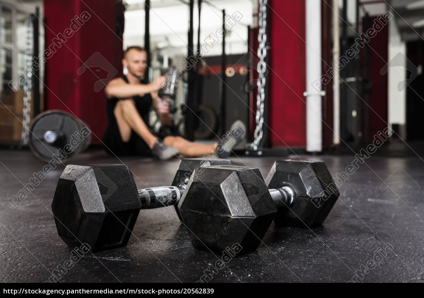 close-up, of, a, pair, of, dumbbells - 20562839