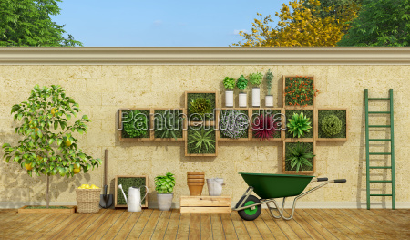 vertical garden on stone wall