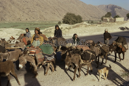 migration of the qashgai tribe iran
