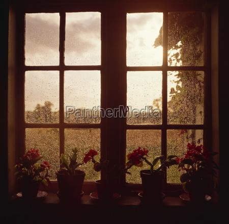 rain on window england united kingdom