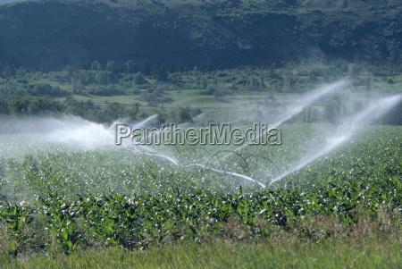 irrigation system british columbia canada north
