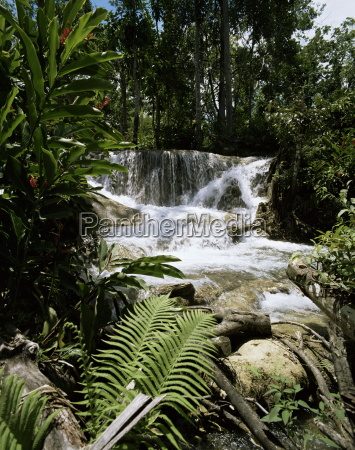 dunns river falls jamaica west indies