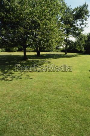 lawn in an oxfordshire garden england