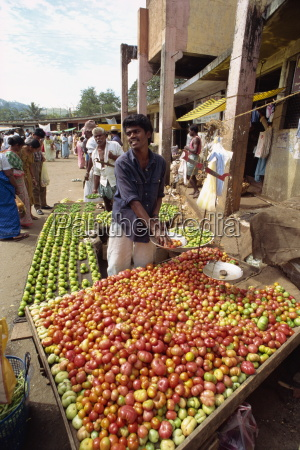 market vendor selling tomatoes main market