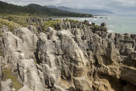 thin bedded oligocene cobden limestone punakaiki