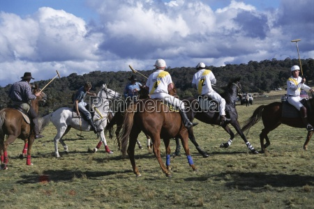 the geeburg polo match bushmen versus