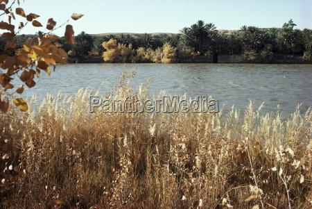 autumn ana on the river euphrates