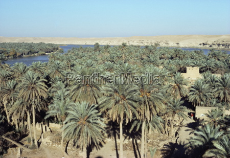 looking north to qalatana iraq middle