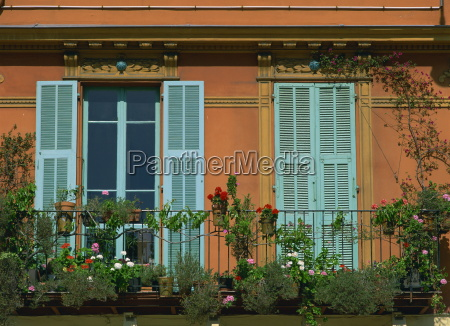 flowers on a balcony in front