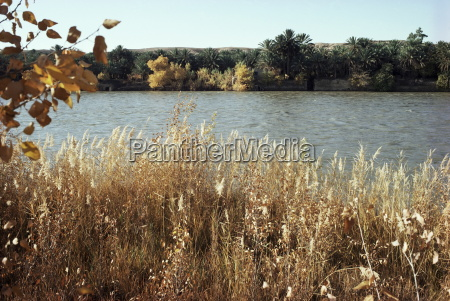 autumn, , ana, , on, the, river, euphrates, - 20588329