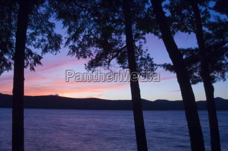 sunset through pine trees lake george