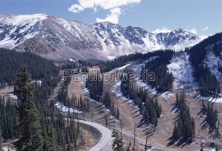 erosion prevention contoured bands of trees