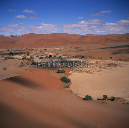 the soussusvlei sand dunes in naukluft