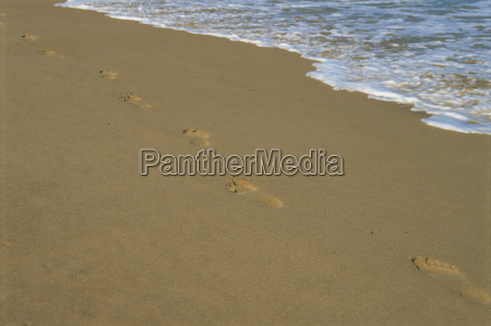 footprints in the sand on a