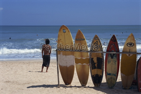 a line of surfboards waiting for