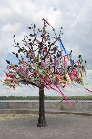 wish tree kiev ukraine europe