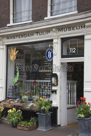 amsterdam tulip museum jordaan amsterdam netherlands