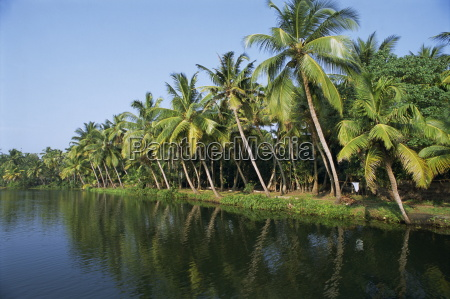 typical backwater scene waterway fringed by