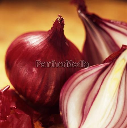 studio shot of red onions