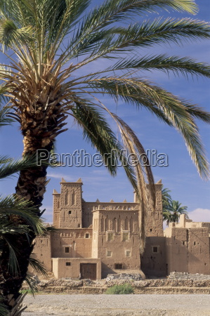 kasbah amridi framed by palm fronds