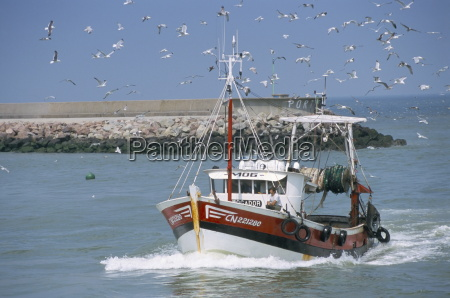 fishing boat returning from fishing deauville