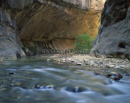 the virgin river flows beneath overhanging