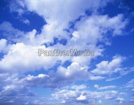cloudscape of puffy white clouds in
