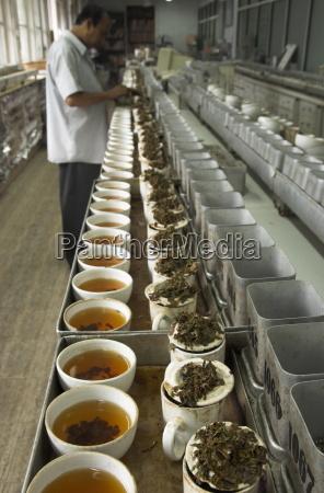 tea cups being prepared for tasting