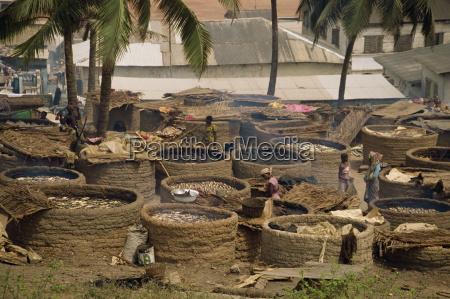 women drying fish over charcoal elmina