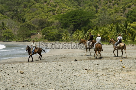 horses on beach at punta islita