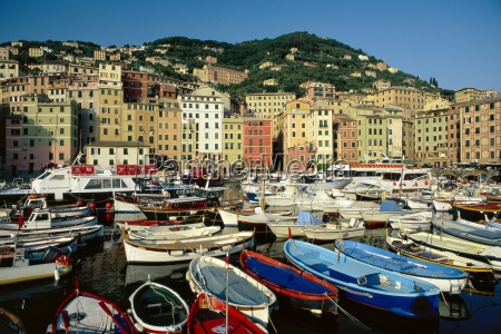 the harbour camogli portofino peninsula liguria