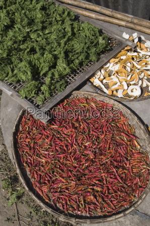 peppers drying in sun luang prabang