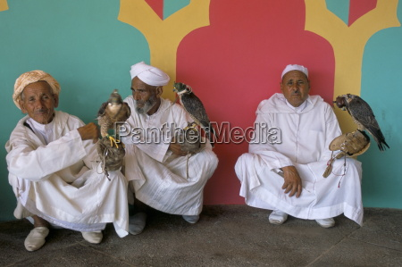 three falconers with their birds at