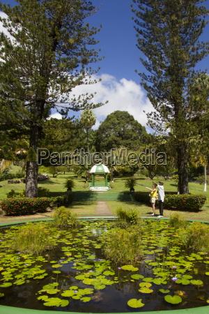 botanical gardens kingstown st vincent st