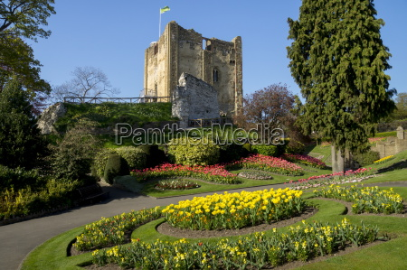 spring flowers in ornamental beds decorate