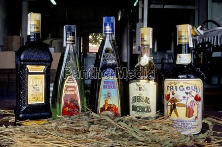 mayan herbs local herb liquor ibiza