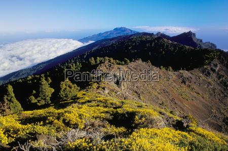 view of parque nacional de la