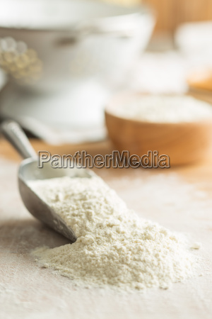 the wheat flour