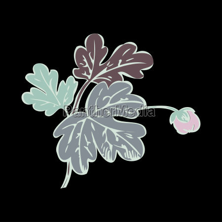floral bush retro on black background